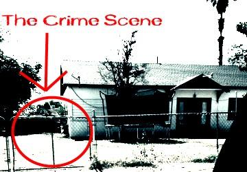 The ACTUAL Crime Scene