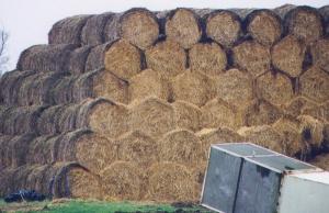 hay down hexes